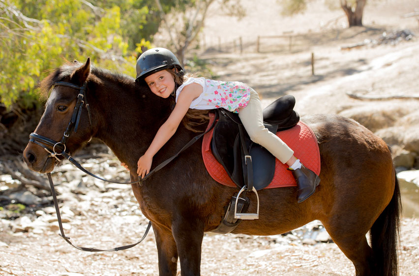 רכיבה טיפולית על סוסים