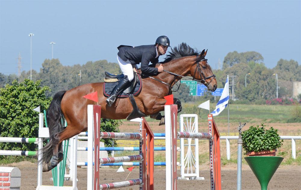 שיעורי רכיבה על סוסים