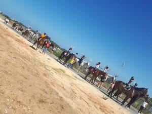קייטנת רכיבה על סוסים