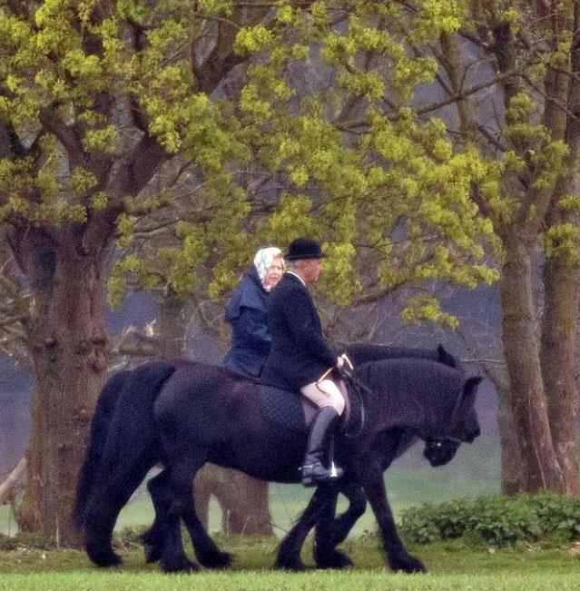 המלכה אליזבת רוכבת על סוסים