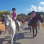 קייטנת רכיבה על סוסים - קיץ 2019