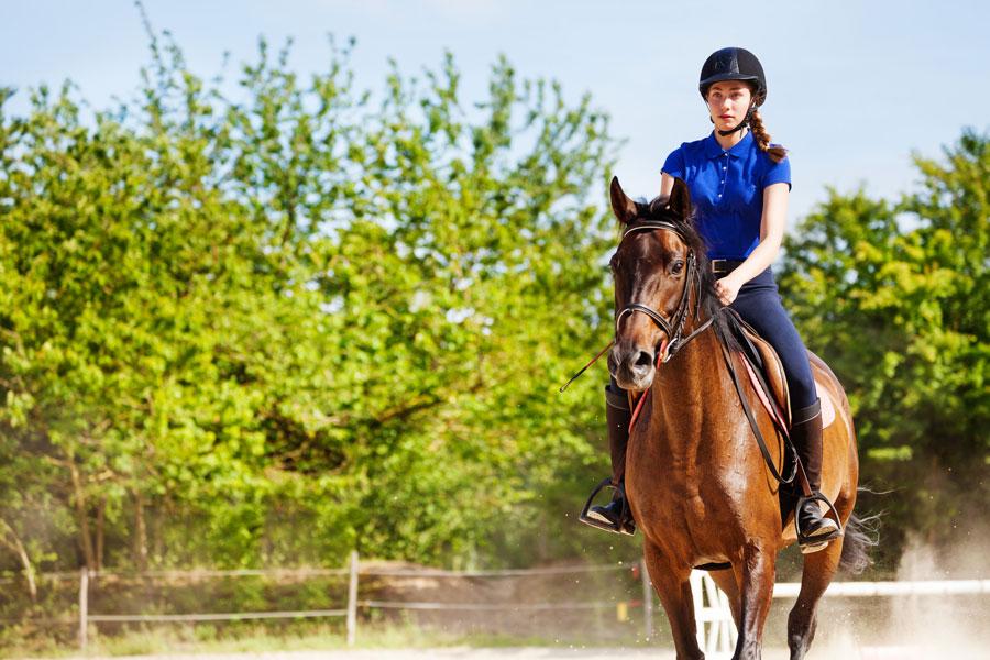 רכיבה על סוסים שיווי משקל