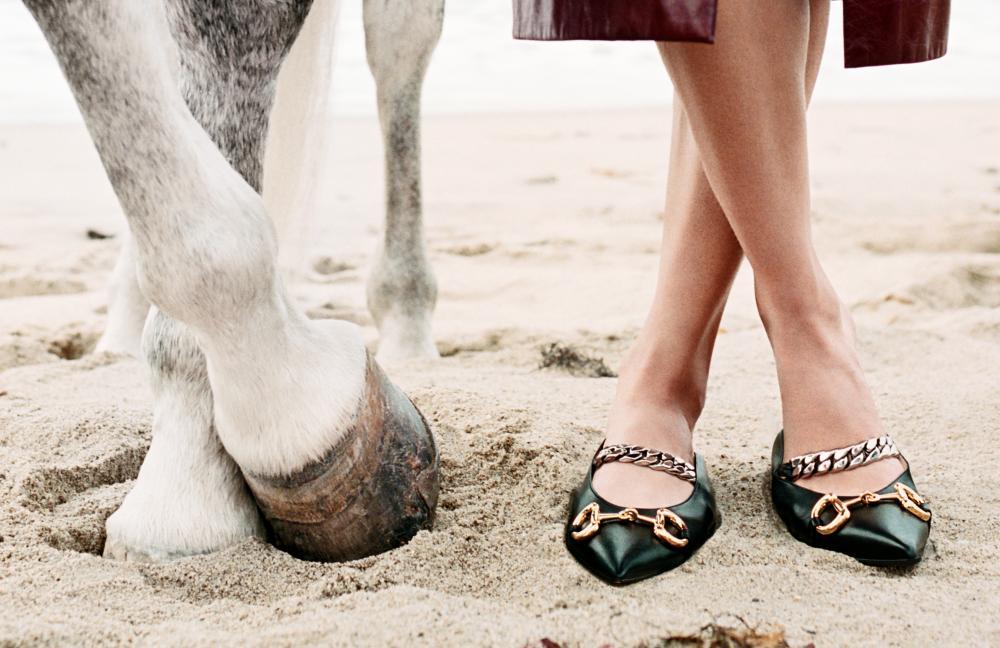 קמפיין אופנה סוסים