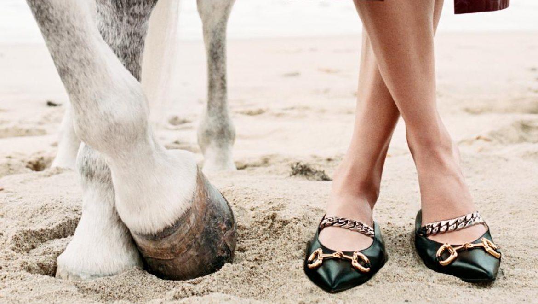 הקמפיין החדש של מותג האופנה גוצ'י – המון המון סוסים!