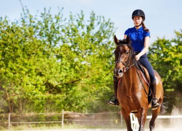 רכיבה על סוסים טובה לבריאות ולשיווי המשקל – מחקר