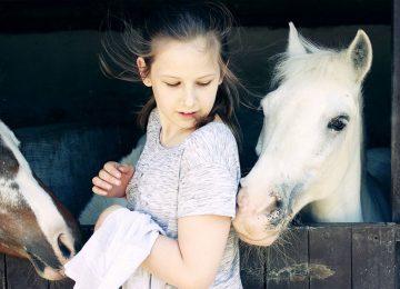 רכיבה על סוסים מסייעת בשיפור הבריאות של ילדים בעודף משקל