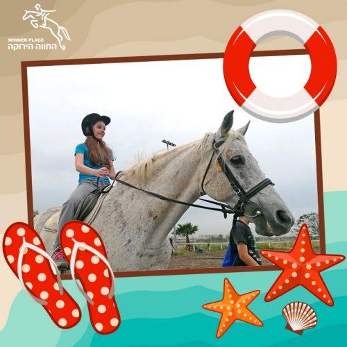 קייטנת רכיבה על סוסים קיץ 2019
